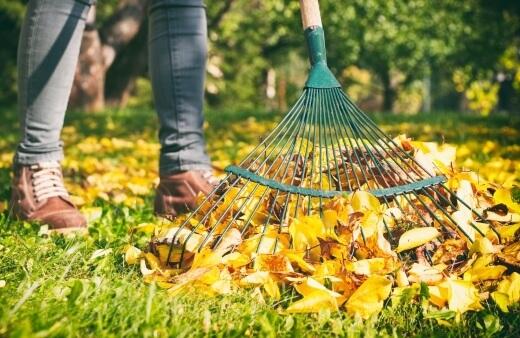 autumn lawn care australia