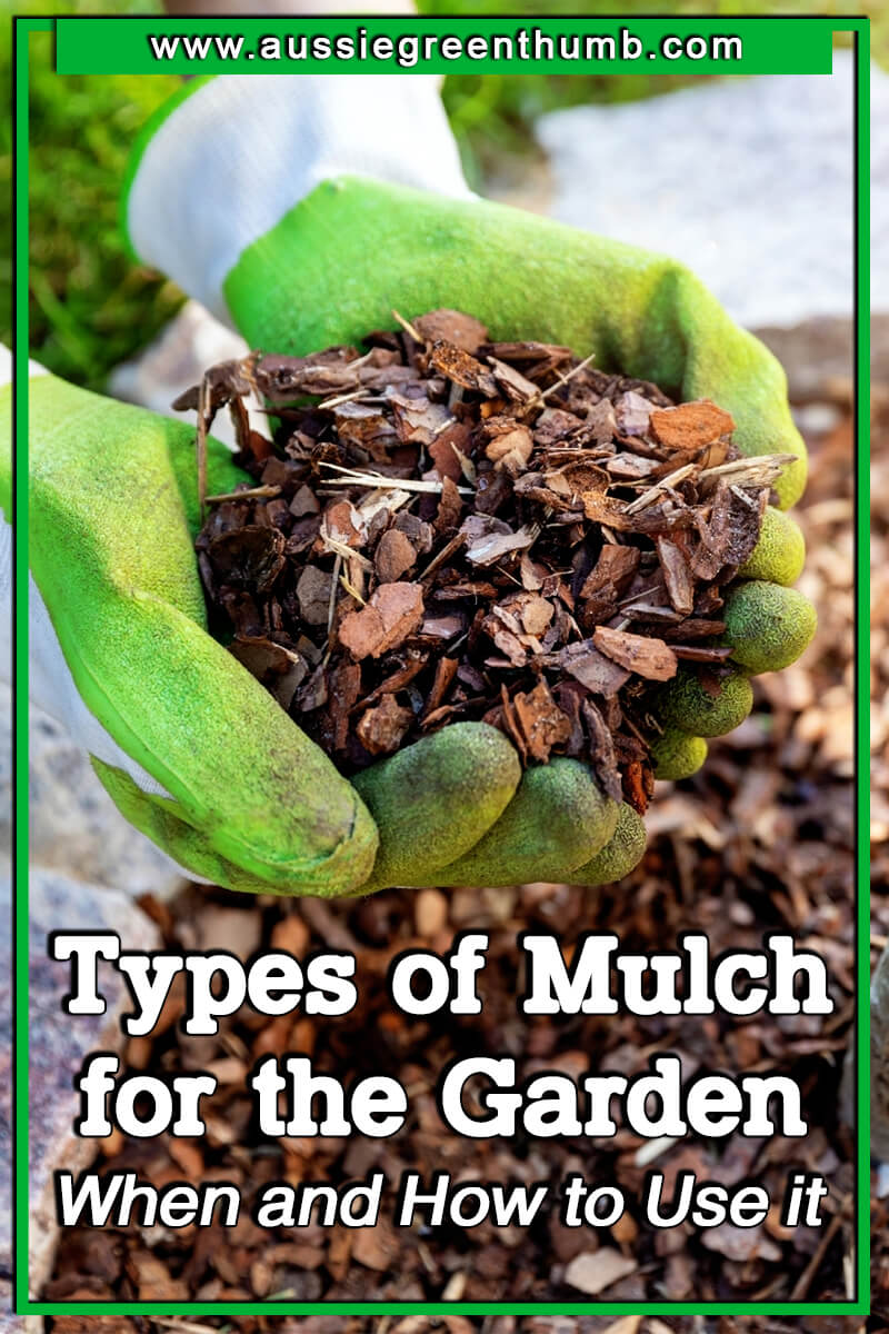 Best Types of Mulch for the Garden When and How to Use it