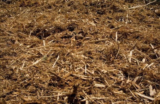 Tea tree mulch is another great option for growers
